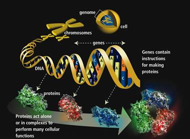 molecularmachine-2