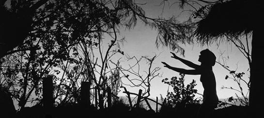 Häxan (1922) Filmografinr: 1922/06